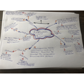 Chloe's mind-map for science- great detail!