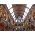 Natural History Museum trip