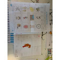 Phonics learning at home