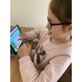 Reading and spelling on Nessy