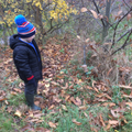 Forest School - our bird feeders.
