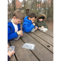 Focussed Activity - looking at our ice art.