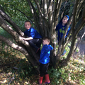 Forest School - play.