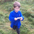 Forest School - looking for parts of a picture.