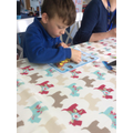 Focussed Activity - design your favourite animal.