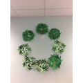 Focussed Activity - our completed wreaths.