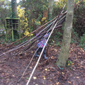 Forest School - den building.