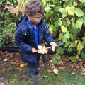Forest School - Making musical intruments.