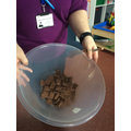 Focussed Activity - we need to melt the chocolate