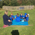 Forest School - what did you hear?