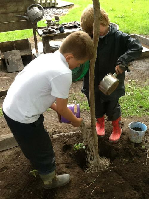 We then filled them with gravel and soil.
