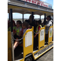 We loved getting the train back down the pier!