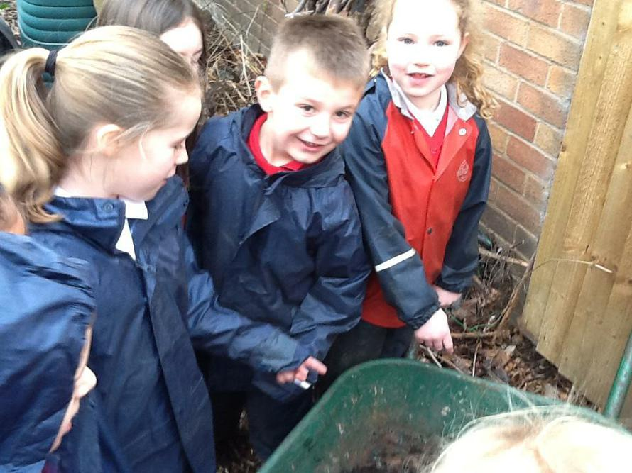 Thomas' tip was to rescue the worms from the area.