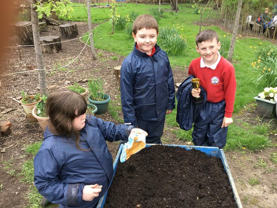 Planting potatoes with Mr Marsh.