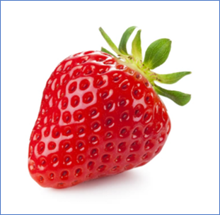 This week we are observing Strawberry Group. It is also their week for 'Show and Tell'.