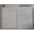 Y2 Spring Term - Understanding and using questions
