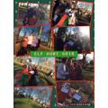 December Elf Hunt 2016
