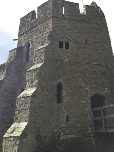 We climbed to the top of the tower!