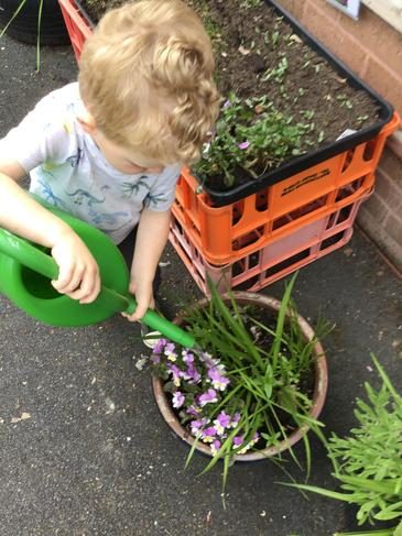 Helping to take care of our Beautiful garden.