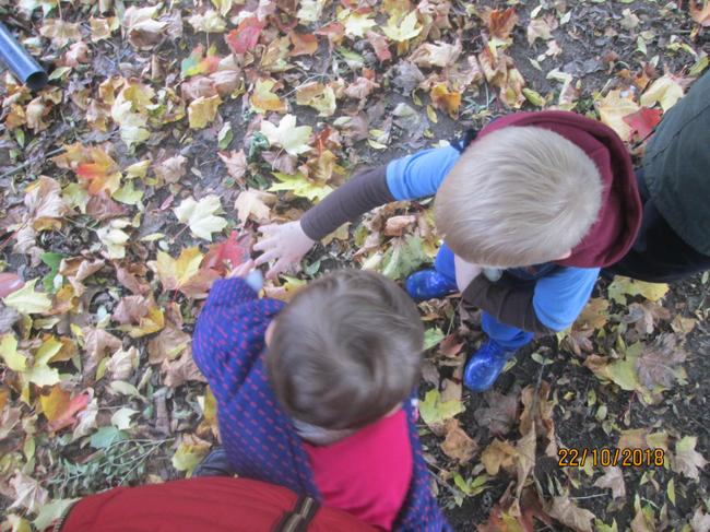 Exploring the world around us during Autumn time.