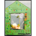 Parts of a plant / the water cycle in a bag
