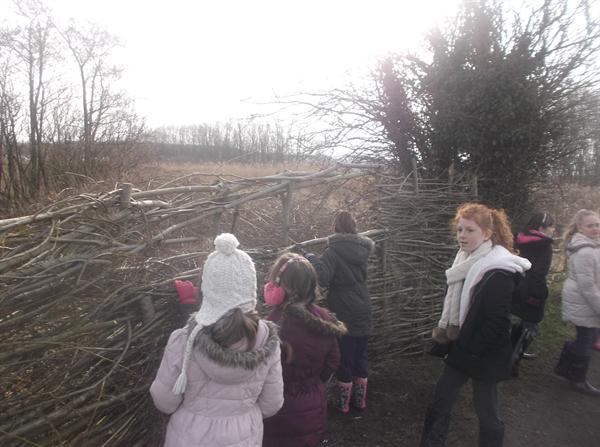 Habitat exploring
