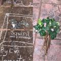 Eva's been doing art in the garden!