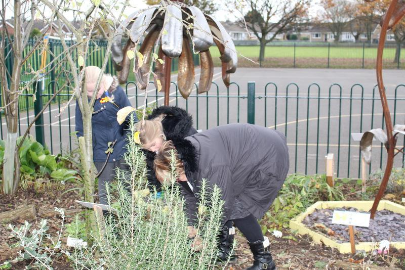 Our Polli:Nation Garden was tidied
