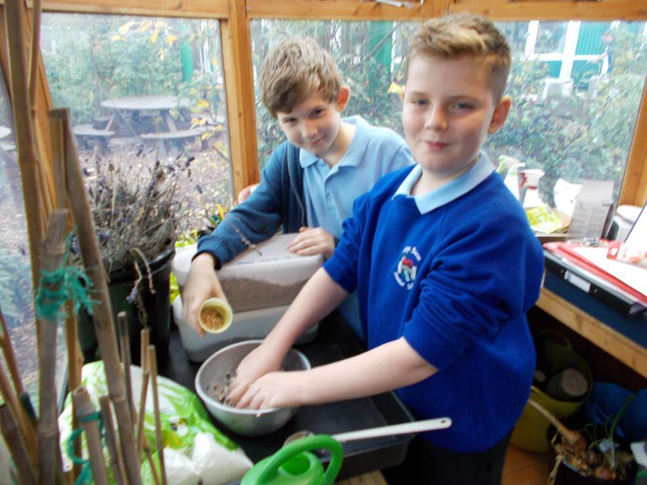 Making bird feeders