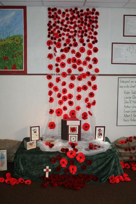 We have had donations of knitted poppies