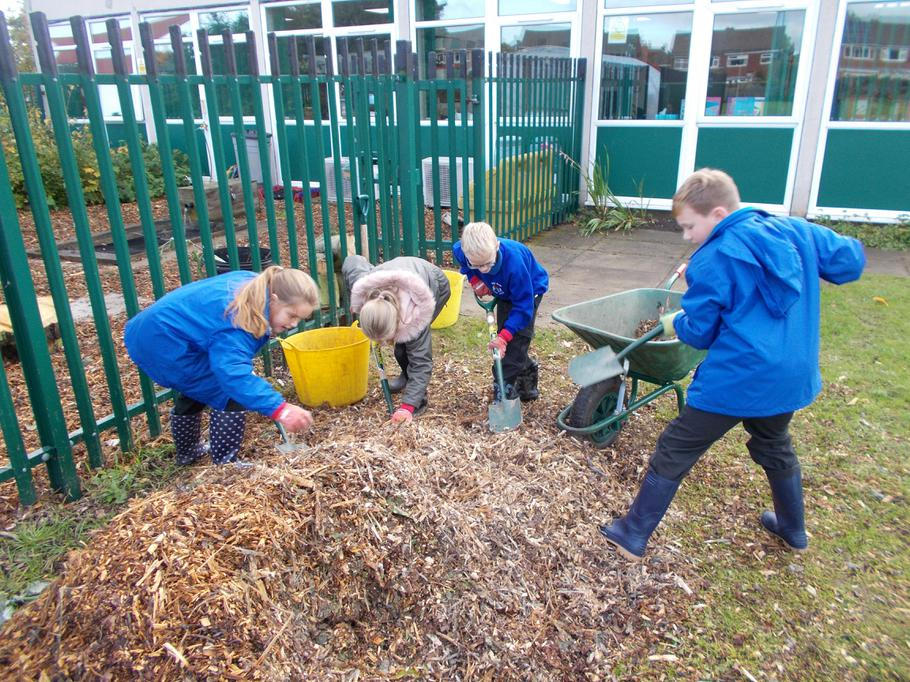Using wood chips for our paths