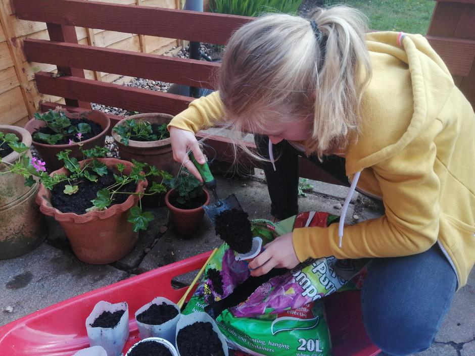 Isabel planting flowers