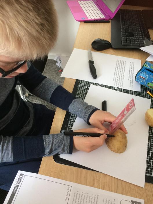 Potato mountain contour work