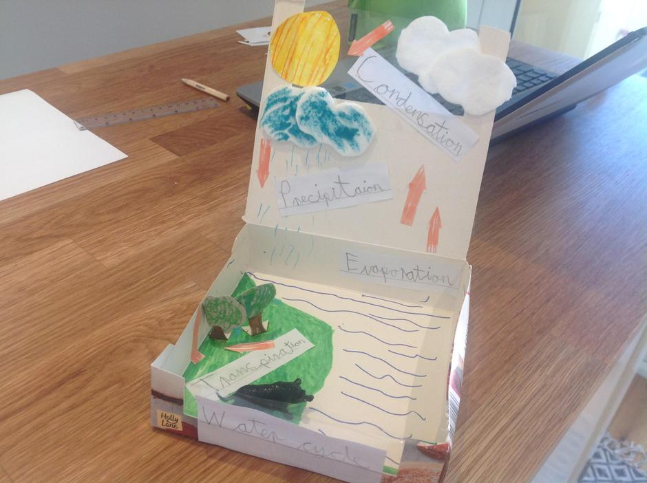 Finley's Water Cycle Model