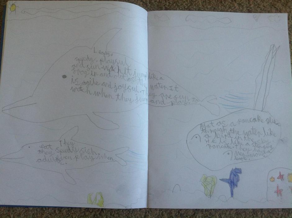 Finley's Shape Poetry