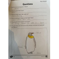Rhea's comprehension [page 2]