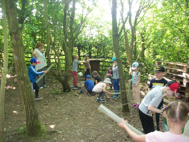 We worked as a team to build a bug hotel.