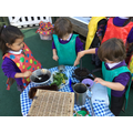 Mixing water soil and mint leaves...