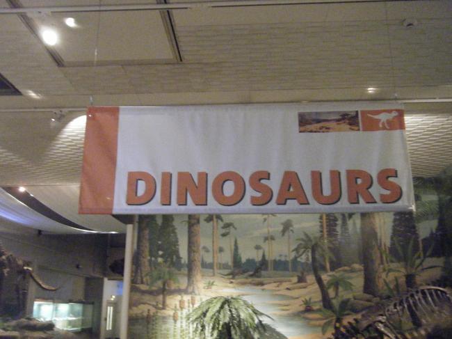 Th dinosaur exhibition