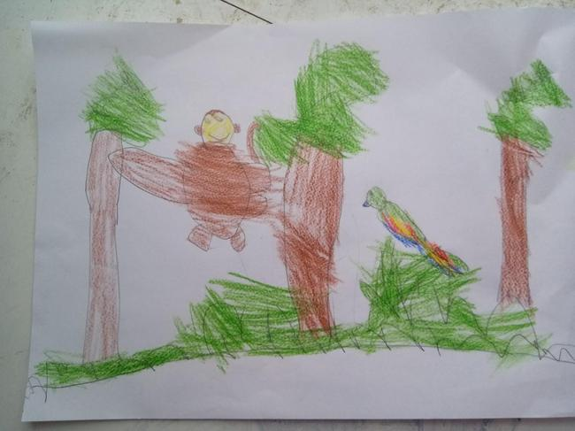Sofia's drawing of the rainforest.