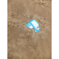 Only a small amount of litter on the beach.