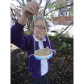 During our 'Birds' theme weeks we made bird feeders for the garden