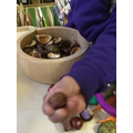 Conkers. Some shiny and smooth and some still inside spiky shells.