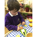 We used different tools to extract seeds.