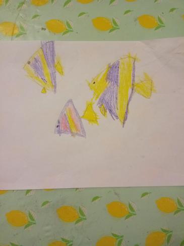 Sofia's 3 fish.