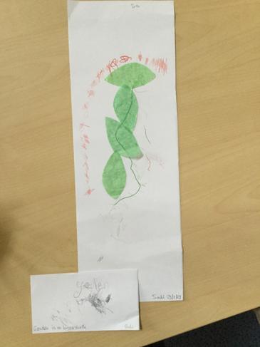 Great work from children at school