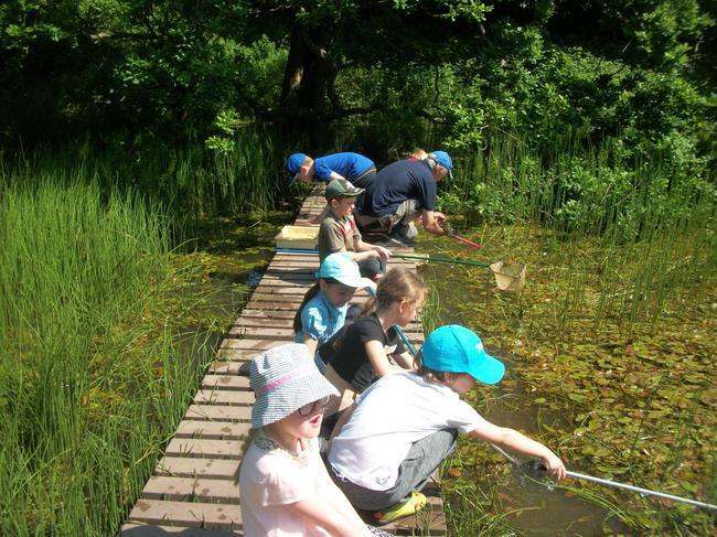 We loved pond dipping.