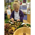 We looked inside the chestnut shells.