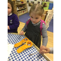 We noticed different shapes of the fruit halves.