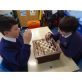 Chess and other board games are available